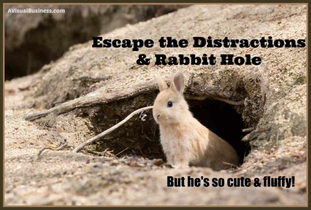 You can escape the squirrel & unnecessary distractions with these tips