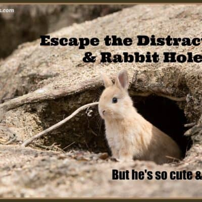 Escape the Distractions & Rabbit Hole
